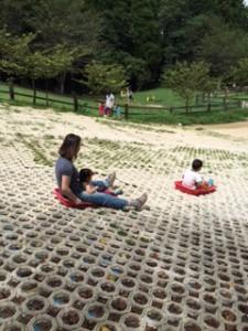 3歳以下でも一緒に滑ればOK!大人もだいぶ楽しいです。