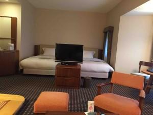 ソファの向こうにはテレビ、そしてベッド
