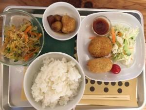 メイン+副菜+小鉢+棚田米のセットで800円!
