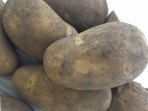 この日は北海道帯広からジャガイモがたくさん届いたそうで、参加者全員にお土産付き!
