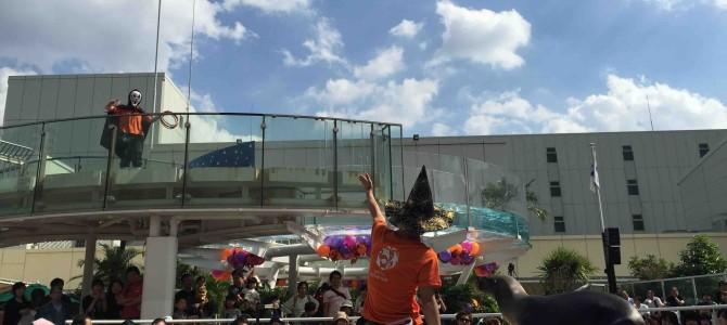 水槽の中も、アシカたちも、あっちもこっちもハロウィン一色の水族館!@東京・池袋サンシャイン水族館