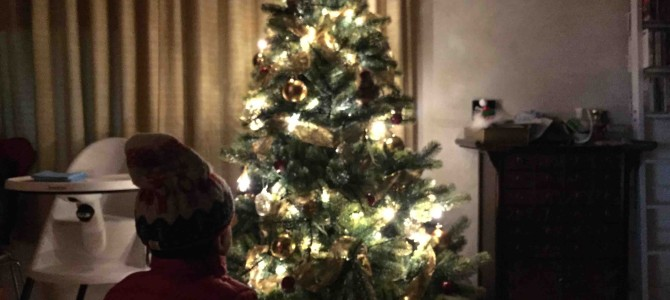 ひとめぼれクリスマスツリーで幸せ気分❤︎も↑↑ ドイツRSグローバルトレード社(GLOBALTRADE)のクリスマスツリー/PLASTIFLO