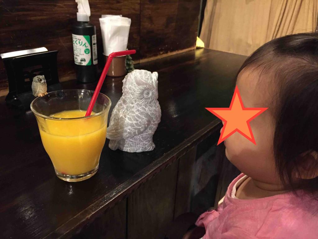 オレンジジュースのコップのふちにもふくろう