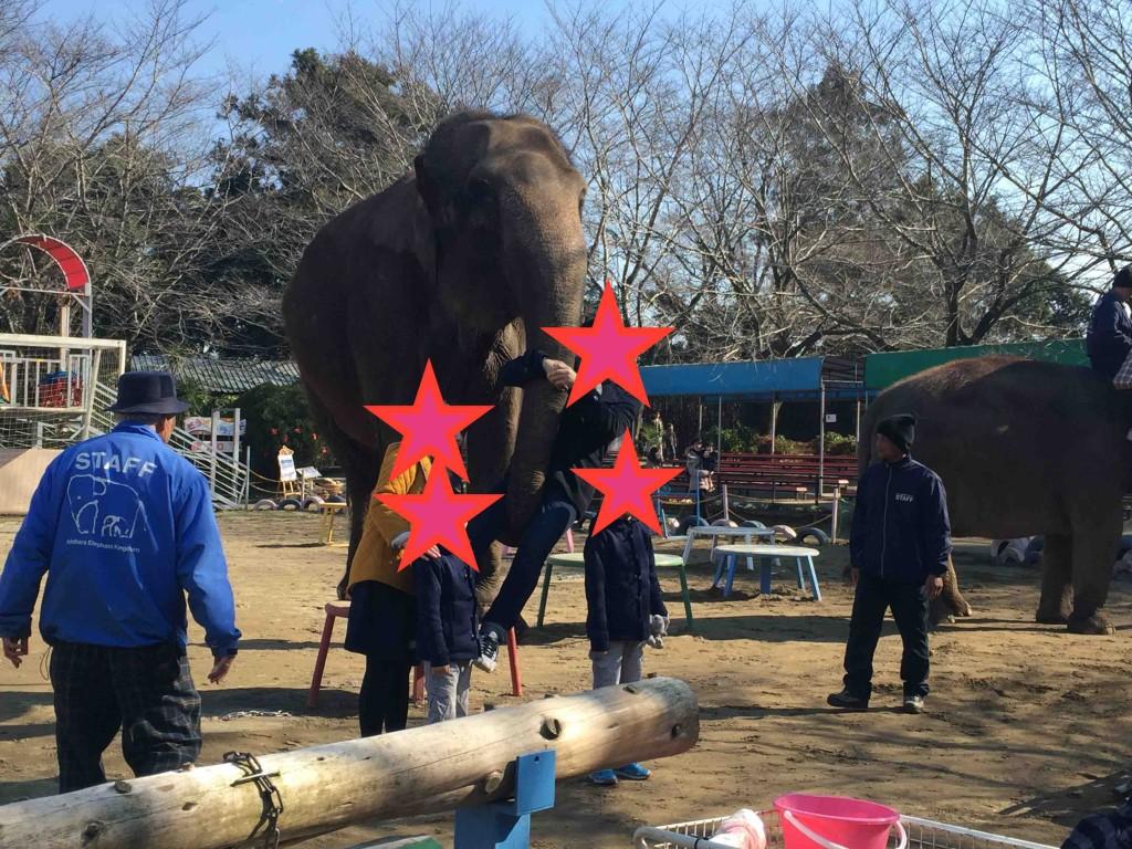 ゾウさんリフト2000円