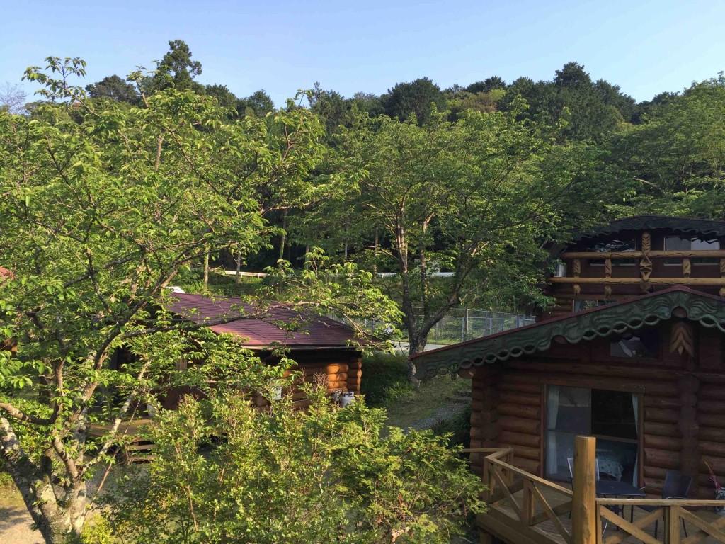 ログハウスは木々に囲まれ、これまた素敵。なんとオーナーの手作りです。