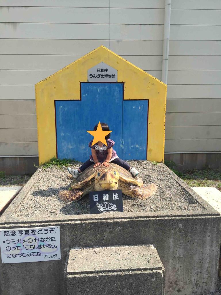 建物を出ると、記念撮影用のちゃんとしたウミガメも用意されておりました