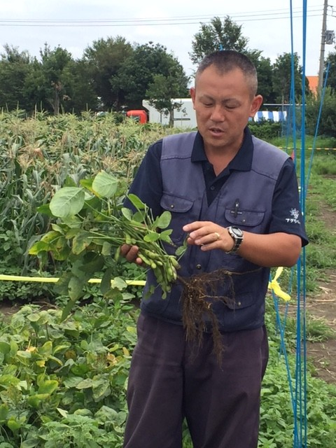 農園の田中さん曰く、極力農薬を使わず、育てているそう。その分たくさん虫もいますが、それは安心安全の証!